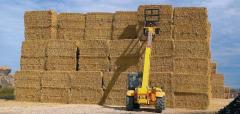 Hay Straw whea