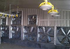 Systems of climate control for poultry farms