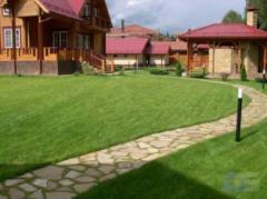 Ландшафтний дизайн садових доріжок з піщаника