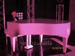 Room grand piano in Kiev, a concert royal in Kiev
