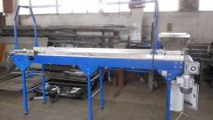 The conveyor for raspberry and bilberry