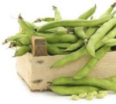 Семена бобов овощных Дольче Anseme 10г