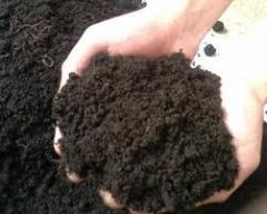 Удобрения органические, минеральные и органические