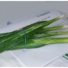 Семена лука Лонг Уайт Кошигая на перо Sakata 50г