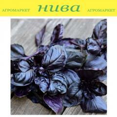 Семена базилика Базилик Фиолетовый Satimex 10г
