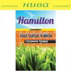 Семена газонной травы Засухоустойчива Hamilton 1кг