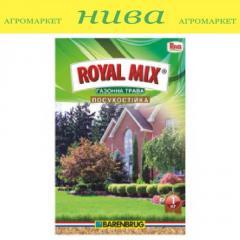 Семена газонной травы Влагосберегающая Royal Mix 1кг