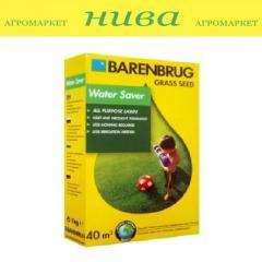 Семена газонной травы Влагосберегающая Barenbrug 1кг 5кг