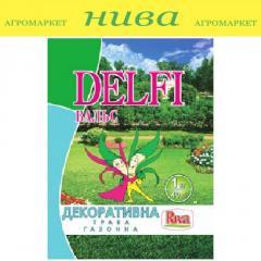 Семена газонной травы Декоративная Вальс Delfi 1кг