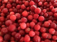 Mirtillo rosso congelato organico