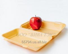 Lunchbox of HP-10 (150*246*60) 250 pieces /