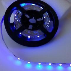 LED film 12V 3528 IP20 Blue