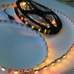 LED film RGB 12V 5050 IP20