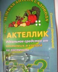 Aktellik of 50%