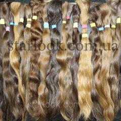 Cut of natural Slavic hair