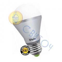 Светодиодная лампа Navigator 94388 NLL-A60-10W 230V 4000K E27 груша матовая