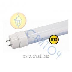 Светодиодная лампа Navigator 71302 NLL-G-T8-18-230-4K-G13 1200 mm (аналог люм.лампы 36W)