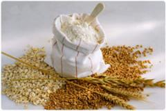 Equipment for flour packing. Packing of flour,