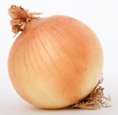 Onions fresh, onions, fresh vegetables,