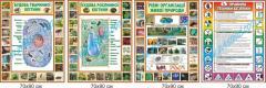 Комплект стендов для кабинета биологии (2040211)