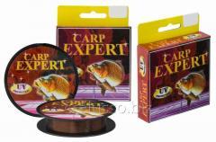 Scaffold of Carp Expert UV 0,25mm 150m