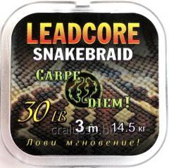 Лидкор Carpe Diem Snakebraid 30 LB 3m