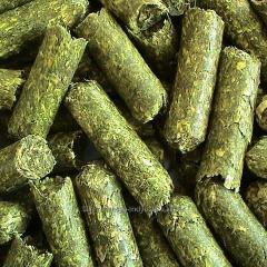 Alfalfa in pellets for rabbits