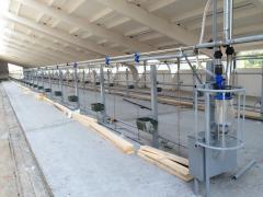 Молокопроводы на 100-200 голов, доильное оборудование, РТИ, навозоуборочные транспортеры ТСН