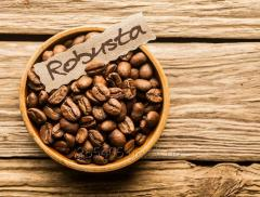 Coffee grain Robusta and other grades