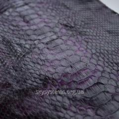 Натуральная кожа питона в отрезках (фиолетовый с черным).