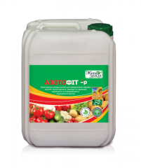 Azotofit-r for stimulation of growth of plants,