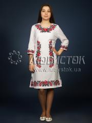 Вышитое платье ЖПВ 4-1