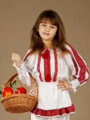 Женская блузка ЖБ 26-13s