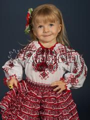 Женская блузка ЖБВ 14-1