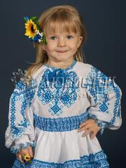 Женская блузка ЖБВ 14-2