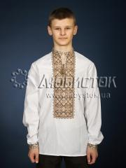 Мужская рубашка-вышиванка ЧСВ 29-3