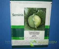 Семена капусты Дидон DIDONE F1 2500 с