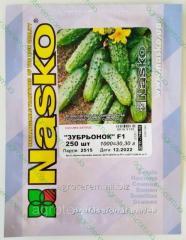 Семена огурца Зубренок 250 с
