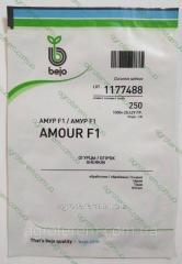 Семена огурца  Амур (Amour) F1 250 с