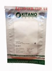 Семена перца острого КС (KS 448) 1г