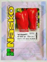 Семена перца Атлант 10000с