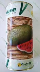 Семена арбуза Чарльстон Грей 500г