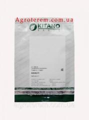 Семена томата Айсан КС (KS 18 F1) 1000с