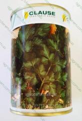 Семена петрушки Новас NOVAS 250г