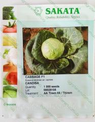Семена капусты Кандиша F1 1000 сем