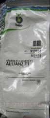 Семена огурца Альянс (Allianz) F1 500 гр
