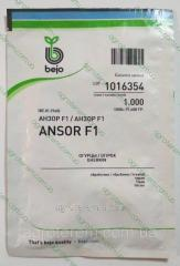 Семена огурца Анзор ANSOR F1 1000 с (до 11.2017г)