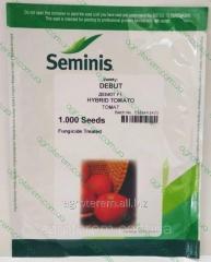 Семена томата Дебют F1 (Debut F1) 1000с
