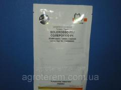 Семена томата Солероссо F1( Solerosso f1) 25000 с