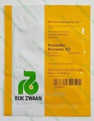 Семена огурца Караоке F1 250 с